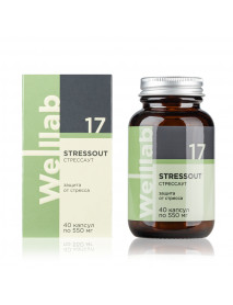 Welllab STRESSOUT, 40 капсул