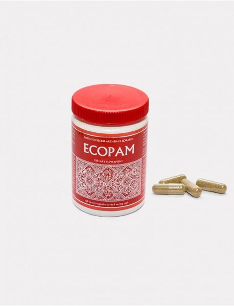 Ecopam Energy